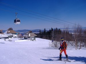 msa gondi snowshoe.jpg