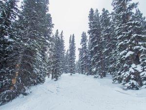 Colorado Skiing 041319 120 DC ACR Conv.jpg